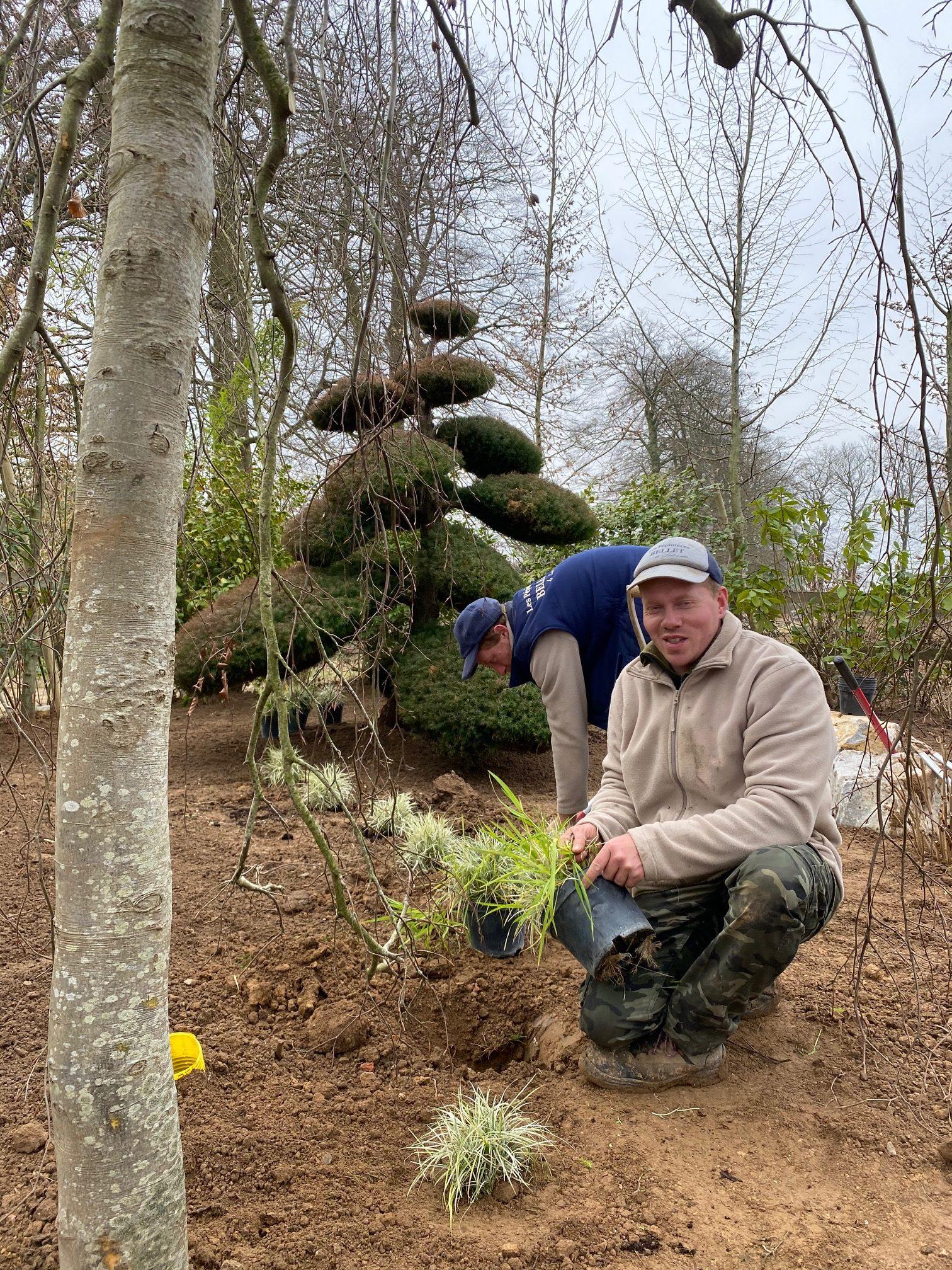 plantation par les jardiniers